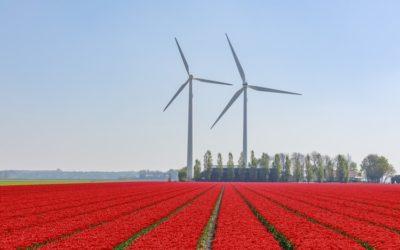Covid-19: l'energia del futuro è green e rinnovabile