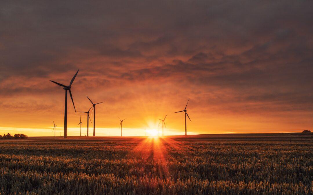 Energia Verde: Enega lancia il Kit Green. Dodici mesi di fornitura da fonti rinnovabili a costo zero