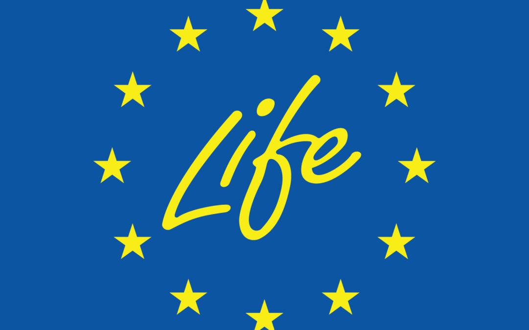 LIFE: nuovi passi avanti verso la transizione green in Ue