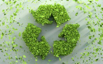 Transizione ecologica: gli investimenti nel Recovery Plan
